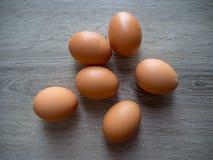 鸡鸡蛋是非常好蛋白质食物 免版税图库摄影