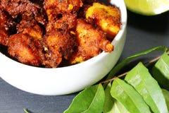 鸡65,印地安鸡开胃菜 库存照片