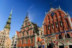 鸥和圣皮特圣徒・彼得的教会,里加,拉脱维亚的议院 图库摄影