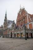 鸥在城镇厅广场,里加,拉脱维亚安置 免版税库存图片