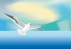 鸥海运 库存图片