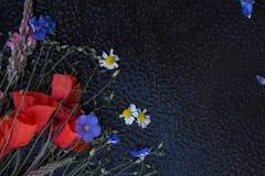 鸦片和野花花束在黑湿背景 免版税库存图片