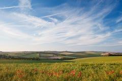 鸦片域横向在英国乡下 库存图片