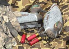 鸭子仍然猎人生活 图库摄影