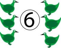 鸭子六 免版税库存图片