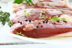 鸭子内圆角肉原始的香料 免版税库存图片