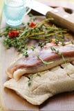 鸭子内圆角肉原始的香料 库存照片