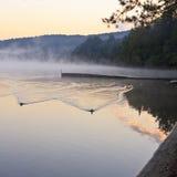 鸭子和有雾的码头 库存照片