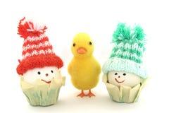 鸭子和鸡蛋 库存图片