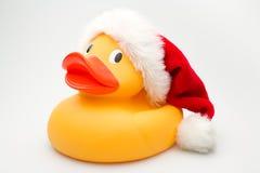 鸭子圣诞老人 库存图片