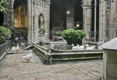 鸭子在和在教会旁边在巴塞罗那,西班牙筑成池塘 免版税库存图片