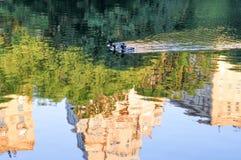 鸭子在Central Park湖 免版税库存照片