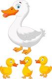 鸭子家庭动画片 免版税库存图片
