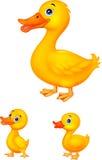 鸭子家庭动画片 向量例证