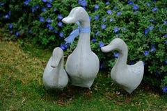 鸭子家庭雕象 库存照片