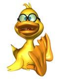 鸭子开会 图库摄影