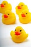 鸭子戏弄黄色 库存照片