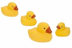 鸭子查出的橡胶 免版税库存图片