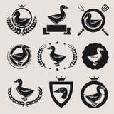 鸭子标签和元素集 向量 库存图片