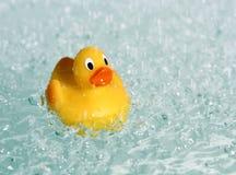 鸭子橡胶玩具水 图库摄影