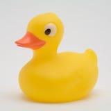 鸭子橡胶黄色 免版税库存照片