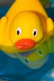 鸭子橡胶 免版税库存照片
