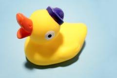 鸭子橡胶 库存照片