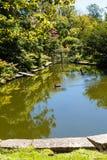 鸭子池塘在公园里 免版税库存图片