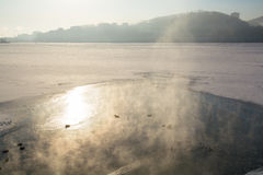 鸭子游泳在冰和雪中的一个结冰的冬天池塘 库存图片
