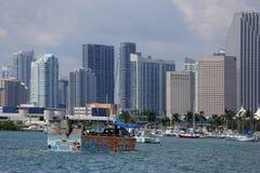 鸭子游览迈阿密 免版税库存图片