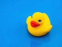 鸭子玩具 免版税库存图片