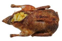 鸭子生锈了 图库摄影