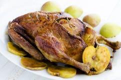 鸭子用苹果 免版税库存照片