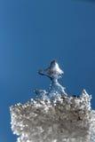 以鸭子的形式美丽的冰 免版税库存图片