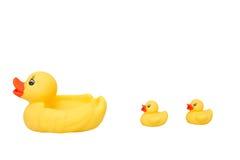 鸭子系列玩具 库存照片