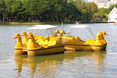 鸭子脚蹬小船 库存照片