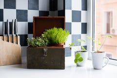 鸭子表单厨房精密支持器物 图库摄影