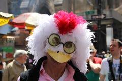鸭子顶头屏蔽 免版税库存图片