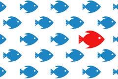 鸭子鸭子按照领导先锋测深索一红色橡胶黄色 鱼特写镜头概念 免版税图库摄影