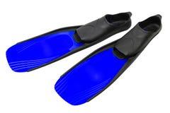 鸭脚板游泳 库存图片