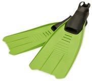 鸭脚板绿色 库存图片