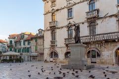 鸽子和一个雕象在分裂 免版税库存照片