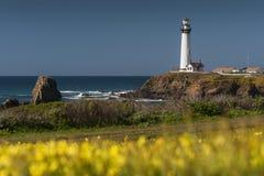 鸽子点灯塔,加利福尼亚 免版税库存照片