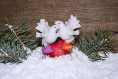 鸽子蒸汽纪念品在雪的 免版税库存图片