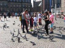 鸽子,人们 免版税库存图片