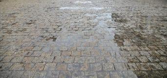 鹅卵石老路面 图库摄影
