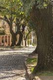 鹅卵石街道在圣Isidro布宜诺斯艾利斯 免版税库存照片