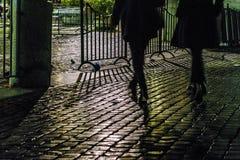 鹅卵石街道夜场面,罗马 免版税图库摄影
