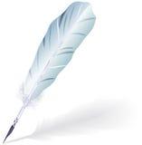 鹅羽毛。 免版税库存照片