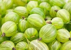 鹅莓绿色 库存照片